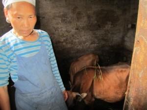 Yang Sheng Cai (2)